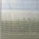 بيوريت 50 - عرض 2.5 متر - طول 200 متر