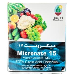 ميكرونيت 15